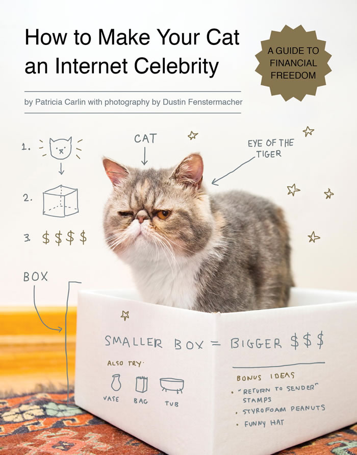 how-to-make-your-cat-an-internet-celebrity-book