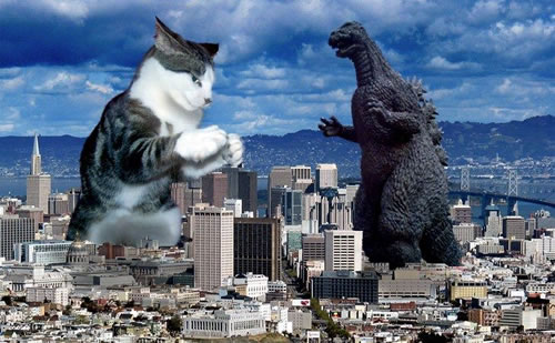 cat-fights-godzilla