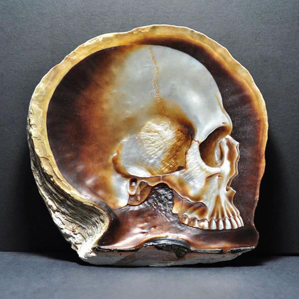 shell_skulls_4