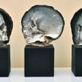 skull_shells3