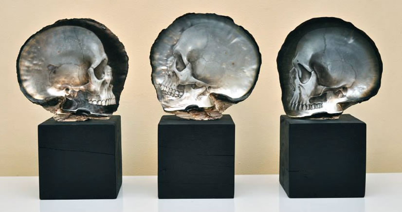 Incredibly Detailed Skulls Carved From Shells