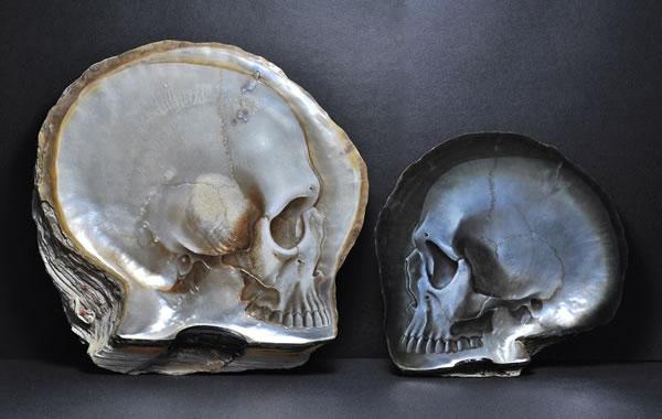skull_shells6